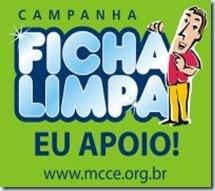 Ficha LImpa  (Rosa ou Espinho Blogspot)
